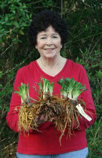Sample-plants-Joann